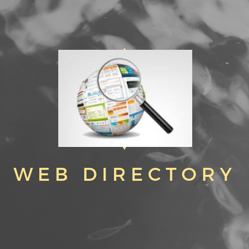 Web Directory Submission in SEO
